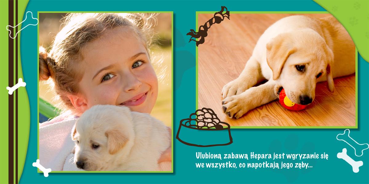 fotoksiążka dla psa