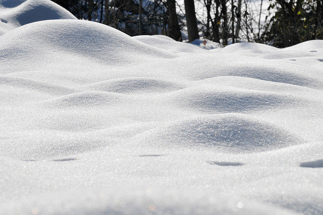 zdjęcie śniegu