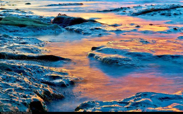 flickr.com/aigle_dor