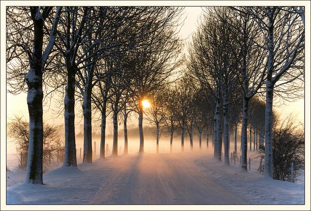 zimowe-inspiracje-03.jpg