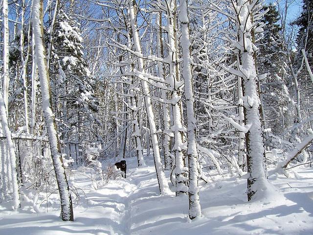 zimowe-inspiracje-05