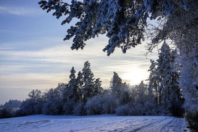 zimowe-inspiracje-06