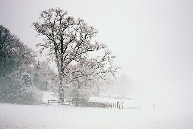 zimowe-inspiracje-10