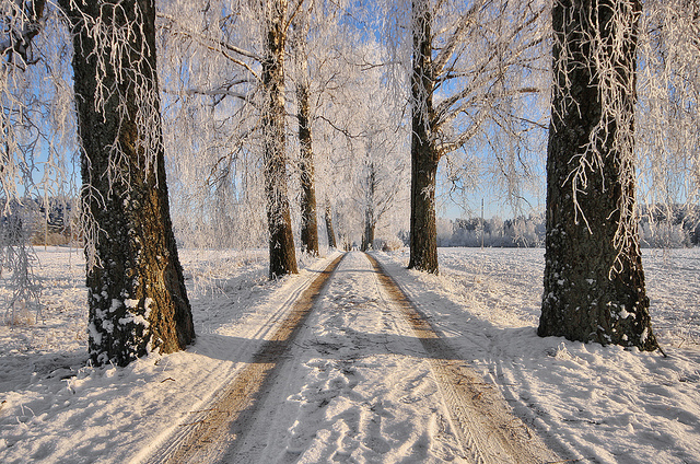 zimowe-inspiracje-11