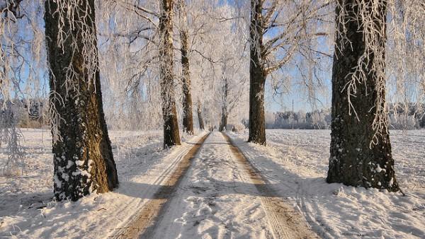 zimowe-inspiracje-ico